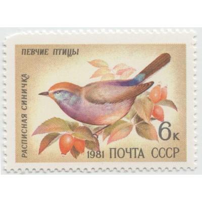 Расписная синичка 1981 г.