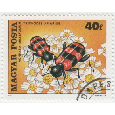 Насекомые опыляющие цветы. 1980 г.