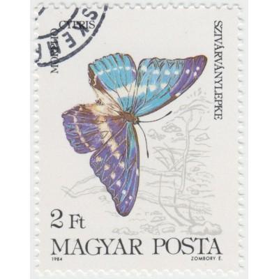 Бабочки. Морфо киприда. 1984 г.