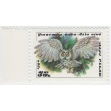 Ушастая сова. 1990 г.
