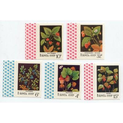 Дикорастущие ягоды 1982 г. 5 марок