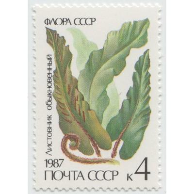 Листовник обыкновенный 1987 г.