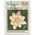 Нимфея Гладстониана. 1981 г.