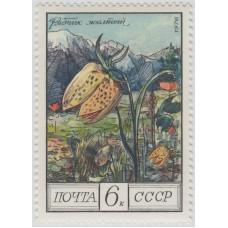 Рябчик желтый. 1976 г.
