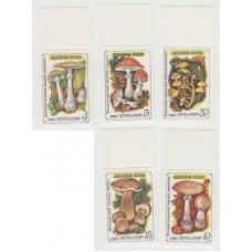 Ядовитые грибы. 1986 г. Серия.